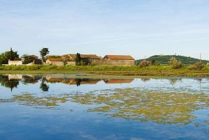 Reserve naturelle nationale de Bagnas