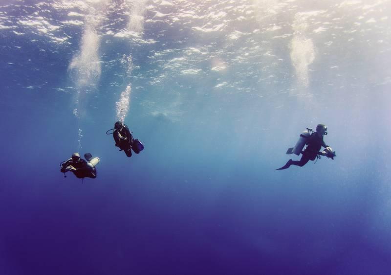 Découvrez les sentiers marins pour une immersion marine inoubliable